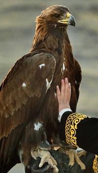 the-eagle-huntress-eagle-column-200